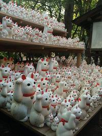 豪徳寺招き猫.jpg